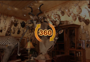 Trophy room design services top taxidermy company in usa for Trophy room design